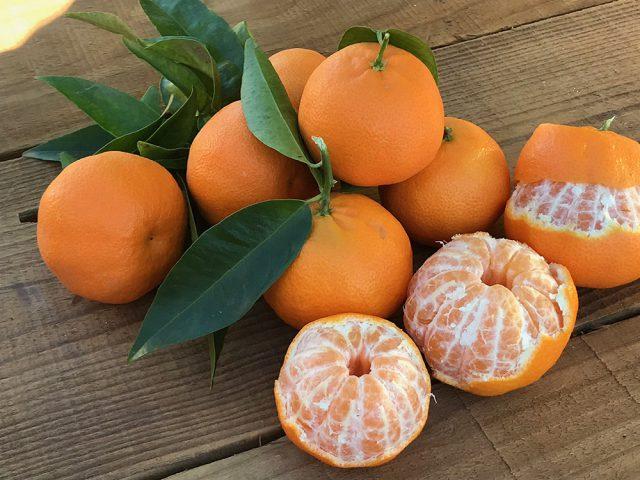 Mandarinas enteras y en gajos