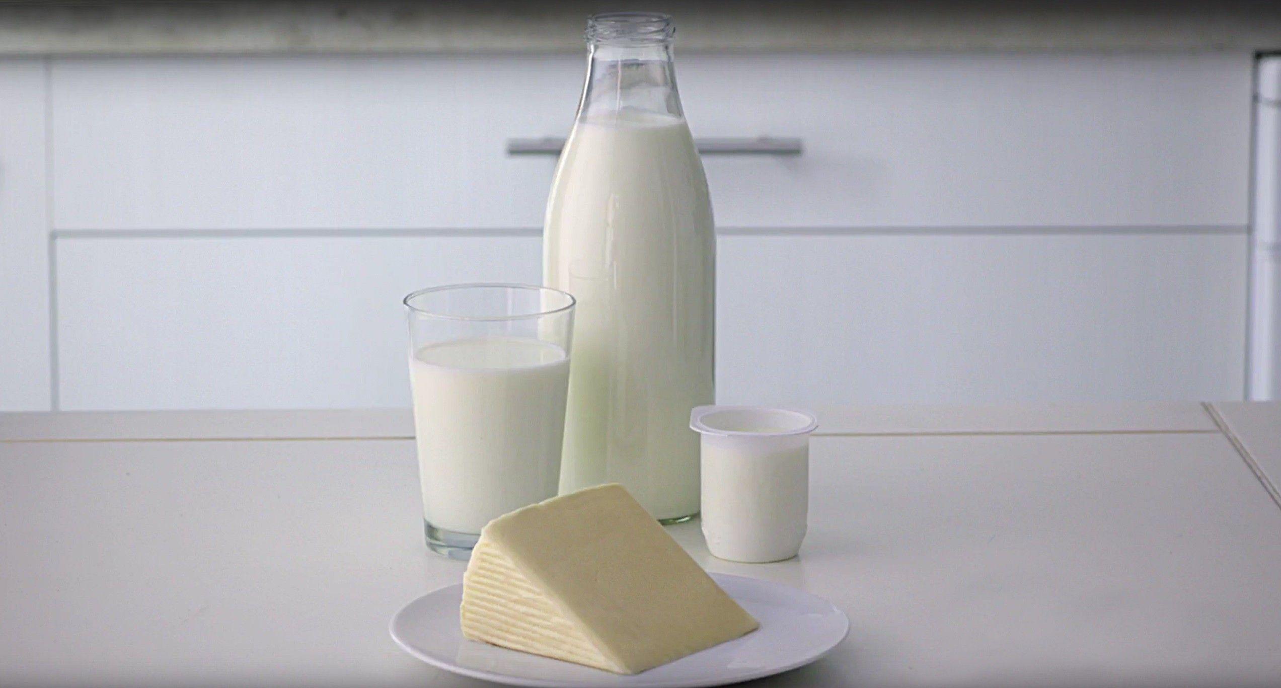 Lácteos para llevar una alimentación saludable