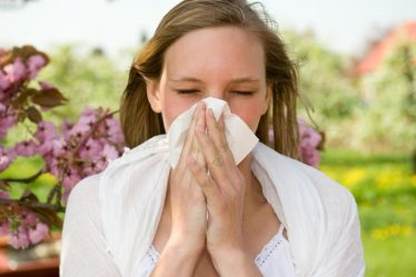 las alergias en el cuerpo humano