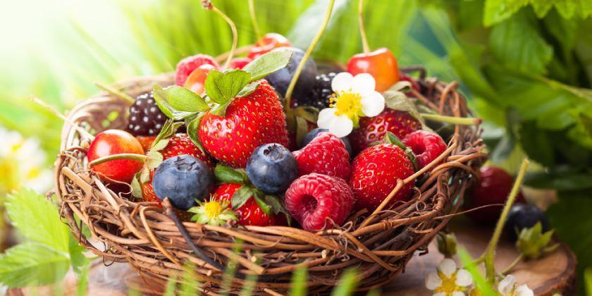 Defensa antioxidante