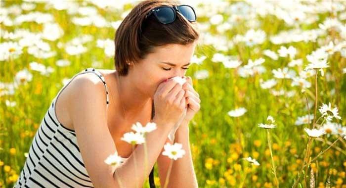 evita la fiebre de heno